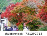 korankei  aichi  japan   on... | Shutterstock . vector #731292715