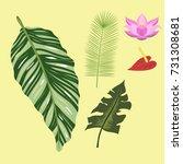 tropical leaves summer green...   Shutterstock .eps vector #731308681