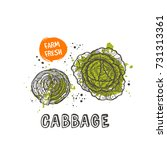 cabbage isolated set. hand... | Shutterstock .eps vector #731313361