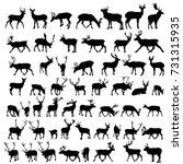 vector large collection of deer ... | Shutterstock .eps vector #731315935