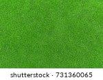 lawn  carpet   | Shutterstock . vector #731360065