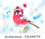 bullfinch in winter hat and... | Shutterstock . vector #731399779