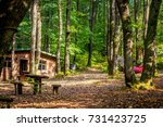 small bungalow in the forest    ...   Shutterstock . vector #731423725