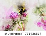 Bumblebee On A Flower....