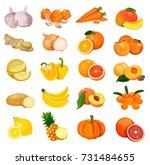 Set Of Orange Fruits ...