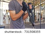 weight training exercise for... | Shutterstock . vector #731508355