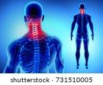 3d illustration of cervical... | Shutterstock . vector #731510005