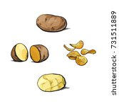 whole and cut  peeled and... | Shutterstock .eps vector #731511889