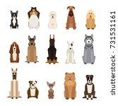 dogs | Shutterstock .eps vector #731531161