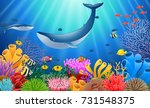 cartoon whale with coral reef... | Shutterstock . vector #731548375