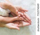 baby feet in mother hands. mom...   Shutterstock . vector #731574049