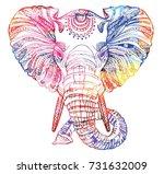 The Head Of An Elephant....