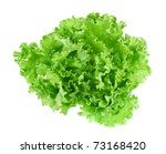 Fresh Green Lettuce Leafs...