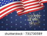 banner to memorial veterans day ... | Shutterstock .eps vector #731730589