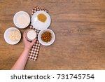 plant alternative milk recipe ... | Shutterstock . vector #731745754