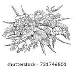 vector peony flower isolated on ... | Shutterstock .eps vector #731746801
