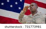 digital composite of veterans...   Shutterstock . vector #731773981