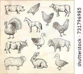 collection of farm animals.... | Shutterstock .eps vector #731796985