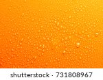 water drops on orange... | Shutterstock . vector #731808967