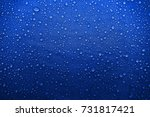 water drops on the fabric | Shutterstock . vector #731817421