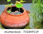 lotus clay jar   Shutterstock . vector #731849119