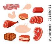 meat set   bacon  chicken  ham  ... | Shutterstock .eps vector #731856481