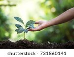 plant a tree natural background ... | Shutterstock . vector #731860141