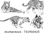 set of vector drawings on the... | Shutterstock .eps vector #731903425