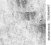 black and white texture of... | Shutterstock . vector #731904997