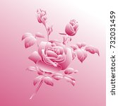 pink rose is on pink background.... | Shutterstock .eps vector #732031459