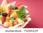 fresh fruits salad with mint ... | Shutterstock . vector #73204129