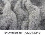 knitted fluffy fabric handmade... | Shutterstock . vector #732042349