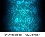 light blue vector indian curved ... | Shutterstock .eps vector #732059554