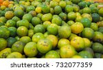 green oranges on the tray | Shutterstock . vector #732077359