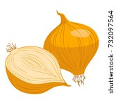onion | Shutterstock .eps vector #732097564