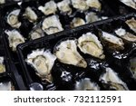 fresh oysters on market stall | Shutterstock . vector #732112591