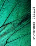 Abstract Turquoise Texture Of...