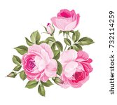 the rose elegant card. a spring ... | Shutterstock .eps vector #732114259