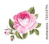 the rose elegant card. a spring ... | Shutterstock .eps vector #732119791
