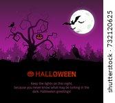 vector illustration on the...   Shutterstock .eps vector #732120625