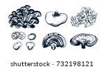 mushroom hand drawn logo set.... | Shutterstock .eps vector #732198121