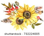 watercolor drawing  autumn... | Shutterstock . vector #732224005