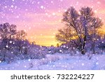 beautiful winter landscape with ... | Shutterstock . vector #732224227