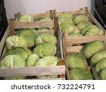 vegetables white cabbage...   Shutterstock . vector #732224791