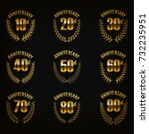 set of gold anniversary badges... | Shutterstock .eps vector #732235951