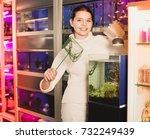 happy positive girl with net... | Shutterstock . vector #732249439