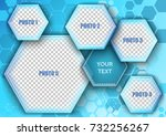 template for photo collage in...   Shutterstock .eps vector #732256267