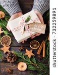 woman holding christmas... | Shutterstock . vector #732259891