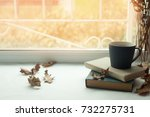 leisure time  reading and... | Shutterstock . vector #732275731