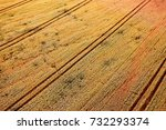 agricultural field  aerial view | Shutterstock . vector #732293374